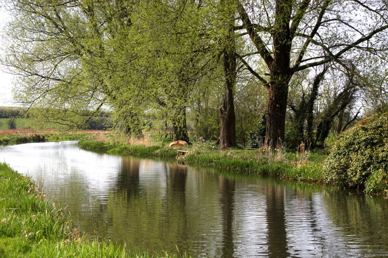 The Bure River