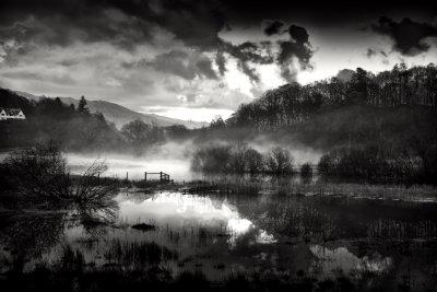 Misty Dawn in Mono