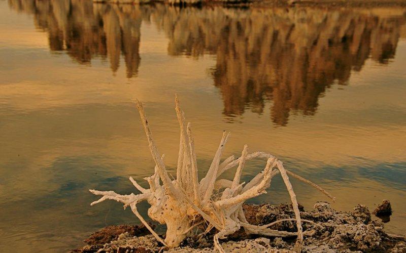 Mono Lake - AFternoon