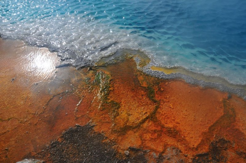 Edge of a Thermal Pool, West Thum, Yellowstone