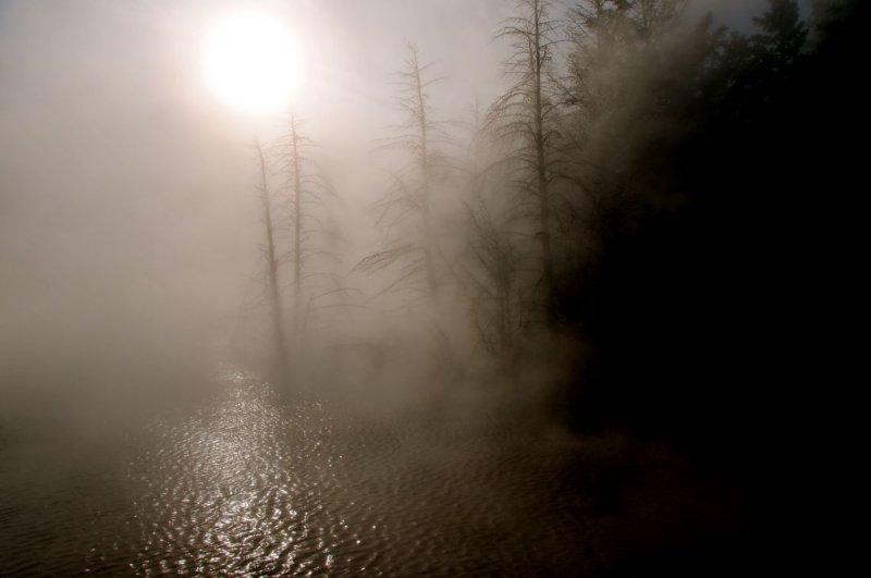 Cannary Spring Mist, Mammoth Hot Springs