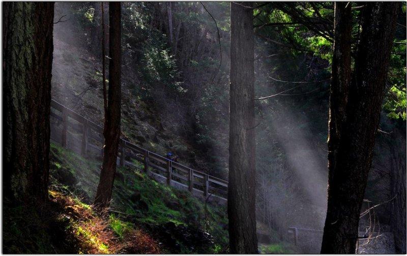 Spray Along the Trail, McArthur-Burney Falls