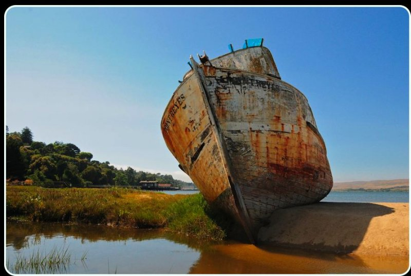 Beached, Inverness (Tomales Bay)