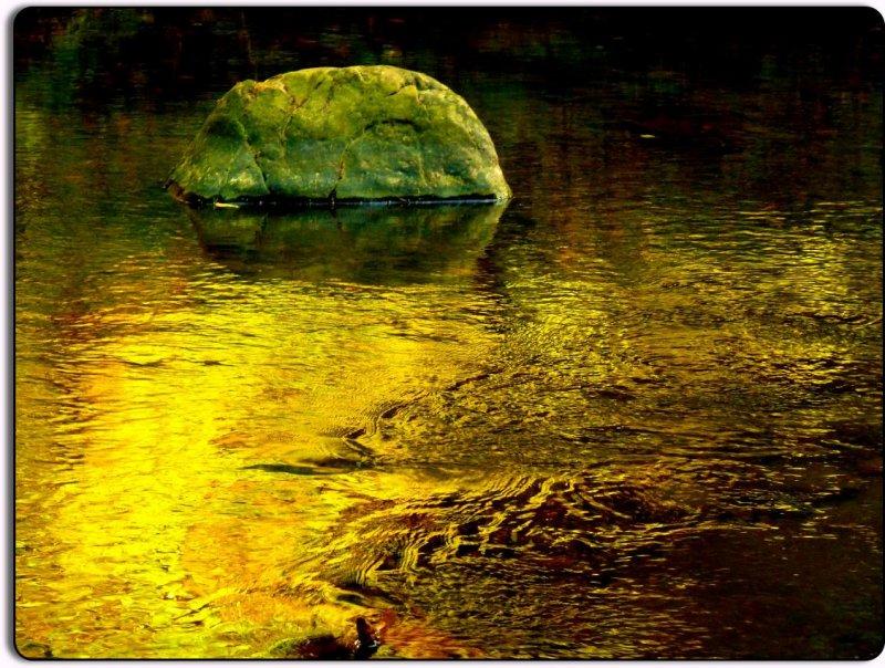 Creek, Rock at Samuel P. Taylor State Park