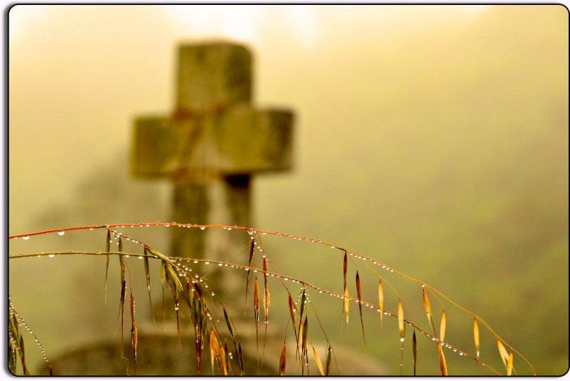 Headstone in the Fog, Bodega, CA