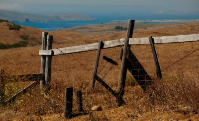 View of Tomales Bay from the Petaluma-Marshall Road