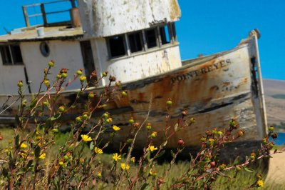 Beached Boat #1