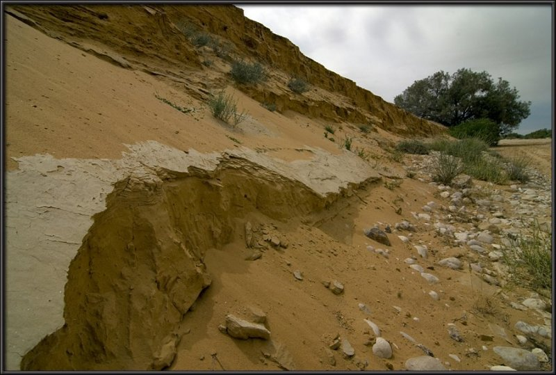 Dunes in Nachal Lavan (White River)