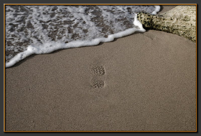 Footprints on the sand... to what end ?