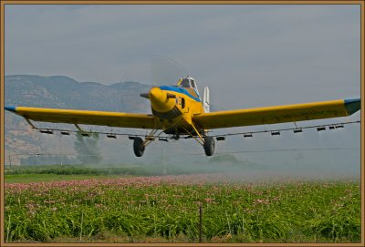Field spraying at Hula