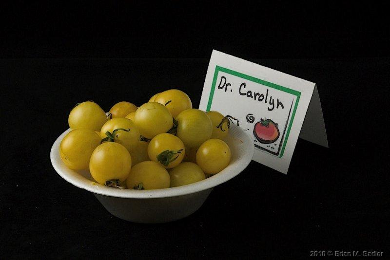 Dr. Carolyn.jpg