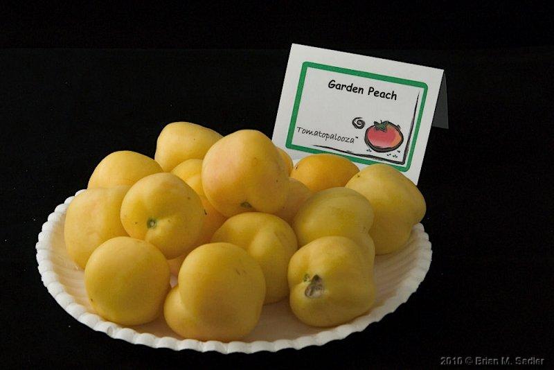 Garden Peach.jpg