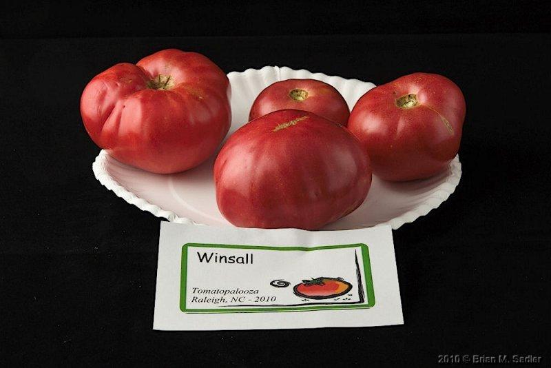 Winsall.jpg