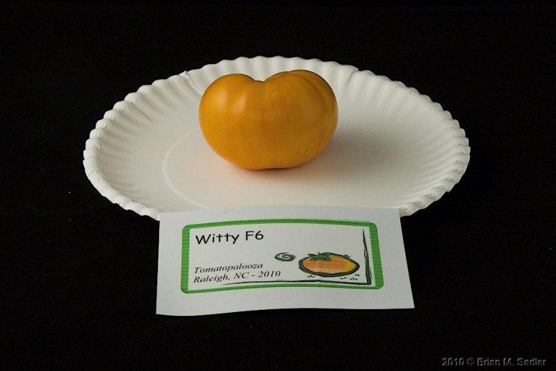 Witty F6.jpg