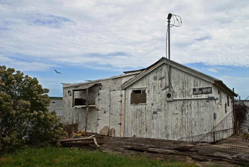 Abandoned Crab Processing Business