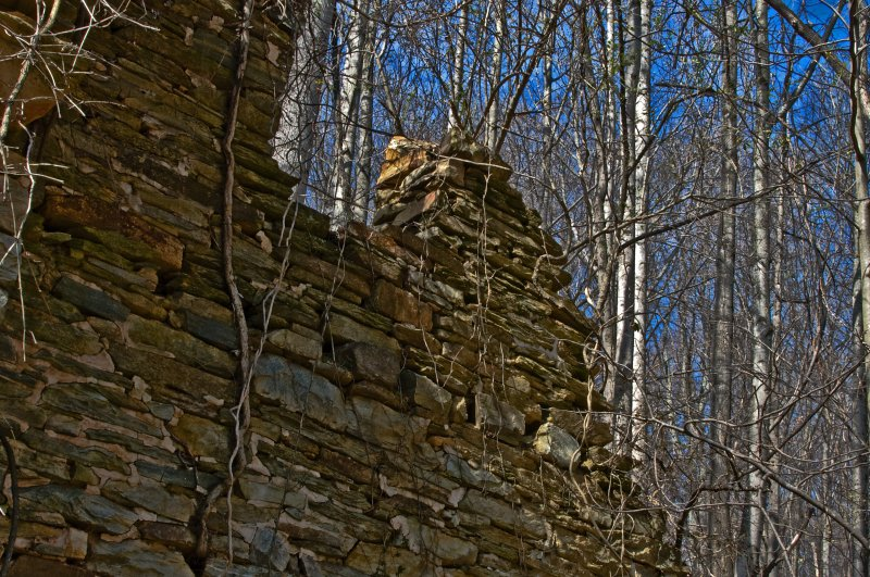 Remains of House Colocated with the Beverly Gristmill at Bull Run Mountain