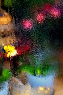 The flower shop window