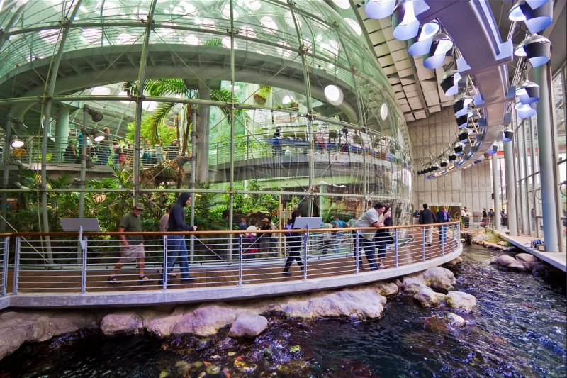 Rainforests Dome