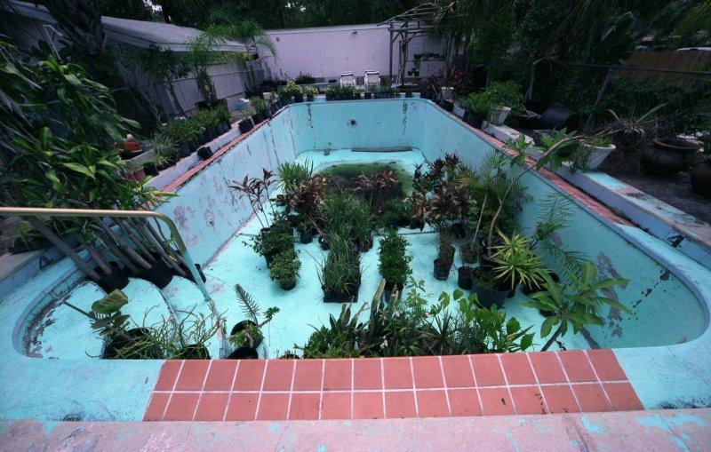 Pool Terrarium