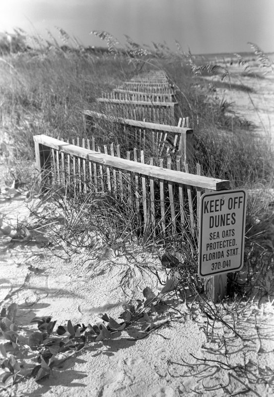 Keep Off Dunes