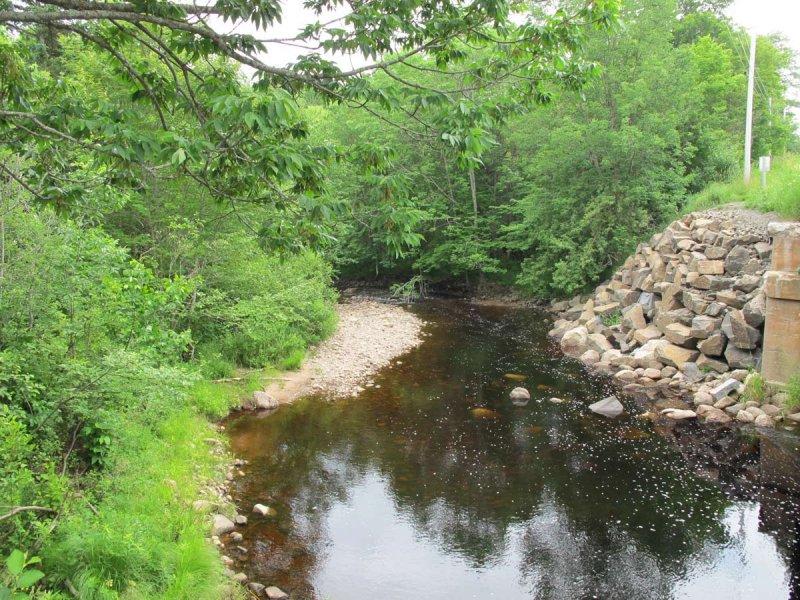 upstream side of bridge on June 26, 2010 - water levels getting low
