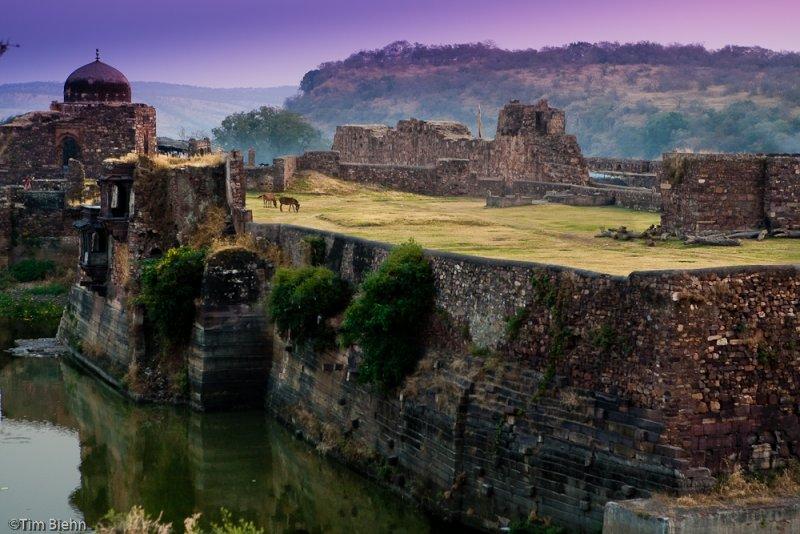 Ruins of Fort Ranthambhore