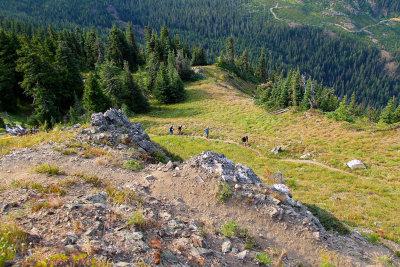 AUGUST - Cascade Crest 100M (WA)