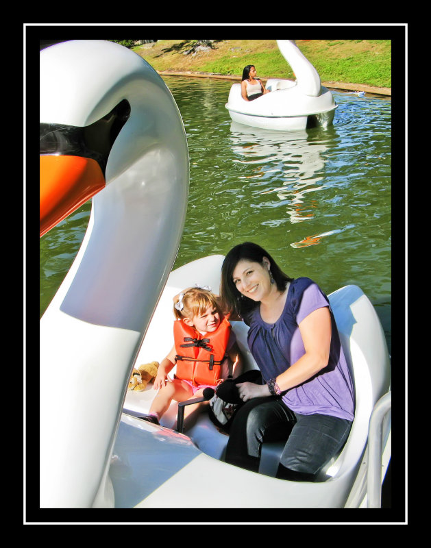 Swan boat ride