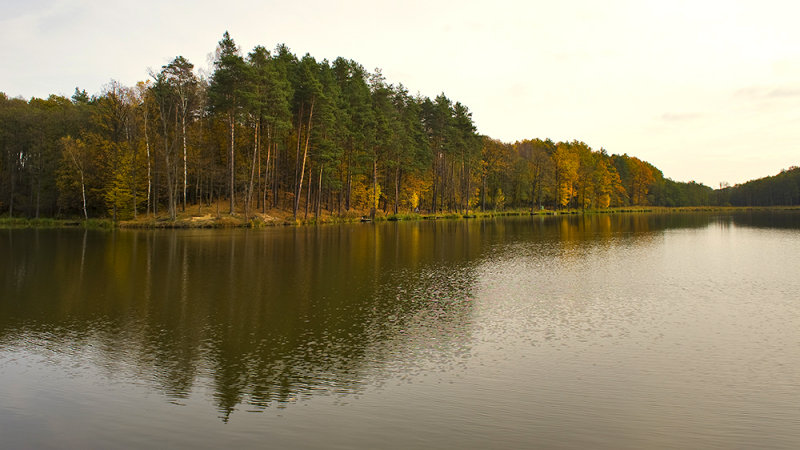 Autumn At The Water