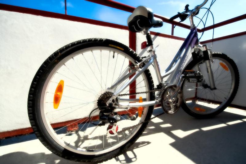 Sunny Wheels