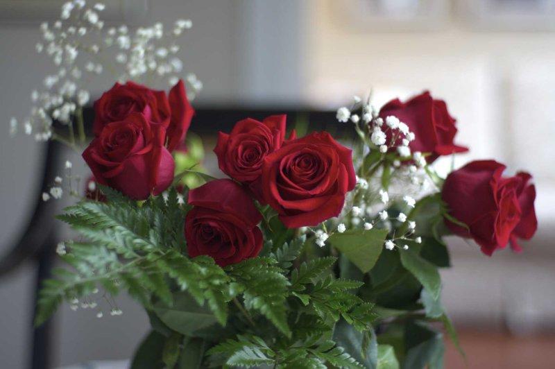 Roses @f1.5 NEX5