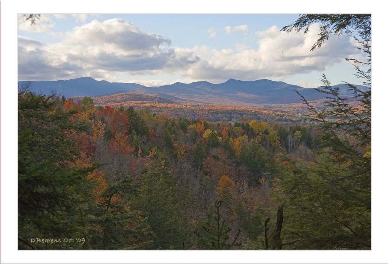 Mt Mansfield Forrest VT.jpg