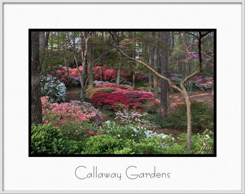 Brochure Callaway Gardens.jpg