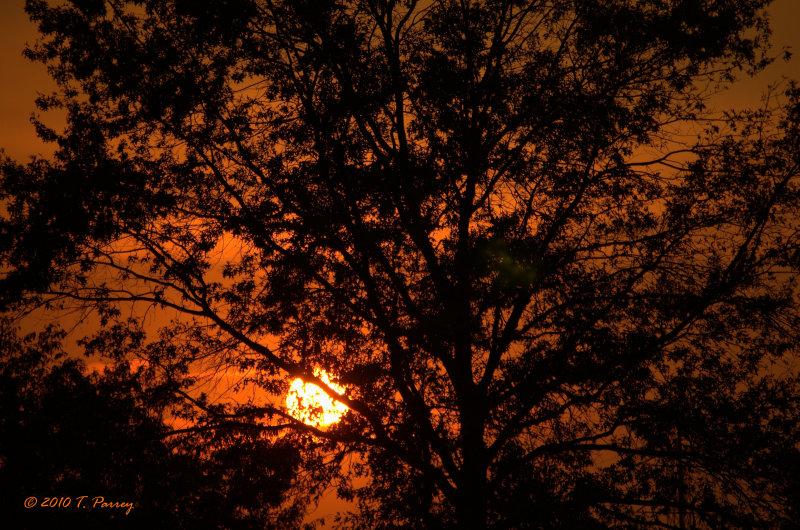 summers last sunset
