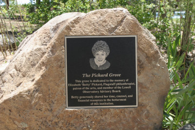 Plaque size upper limit--Betty Pickard Grove, Lowell Observatory