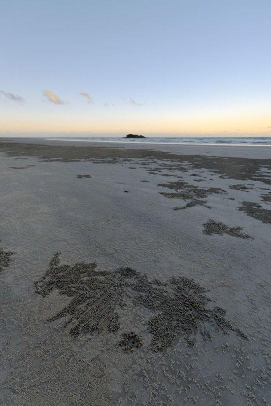 Island, crab tracks foreground (_DSC0042)