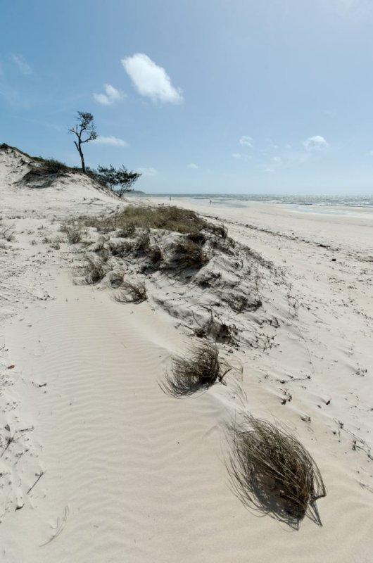 Beach dune and cloud (DSC3839)