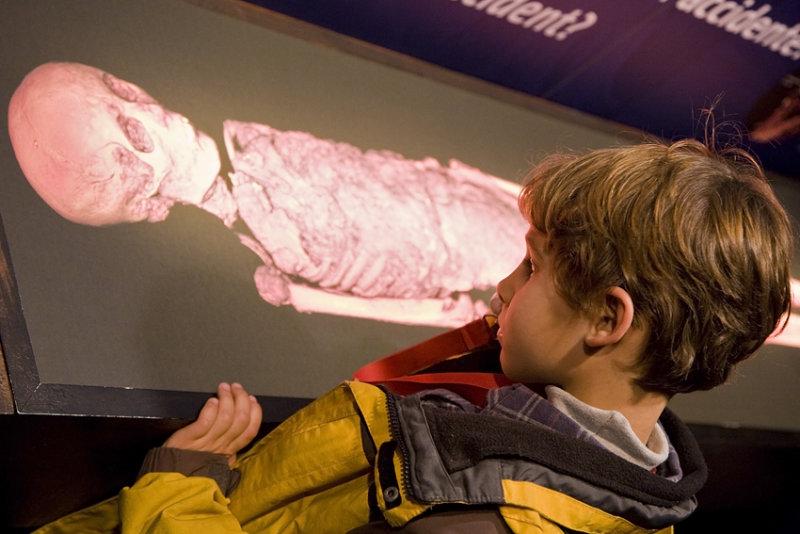 Mirando la momia