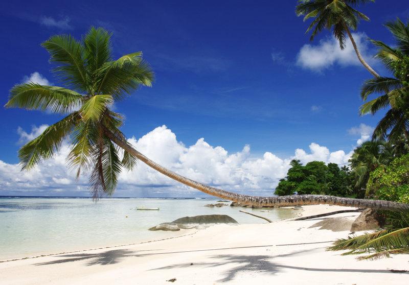 indian ocean16.jpg