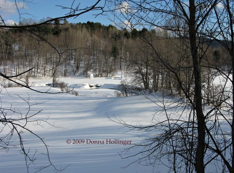 Oxbow in snow