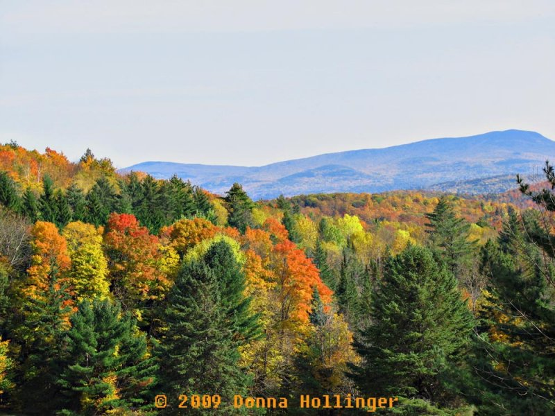 Vermont View in Fall