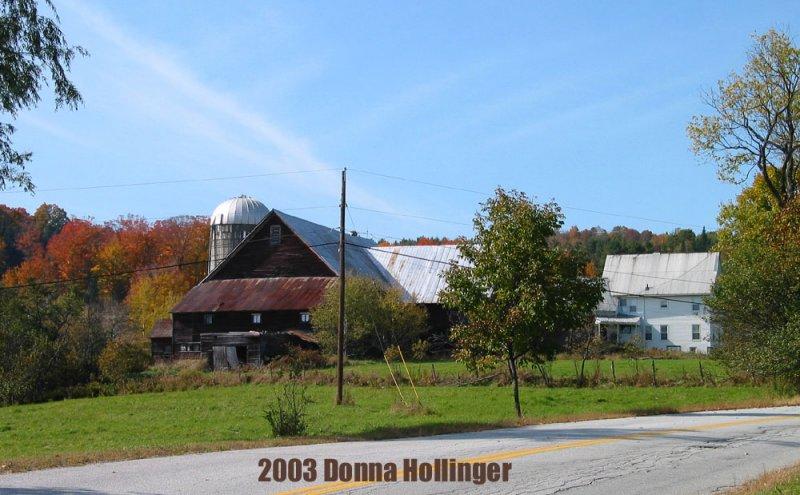 A Dairy Farm