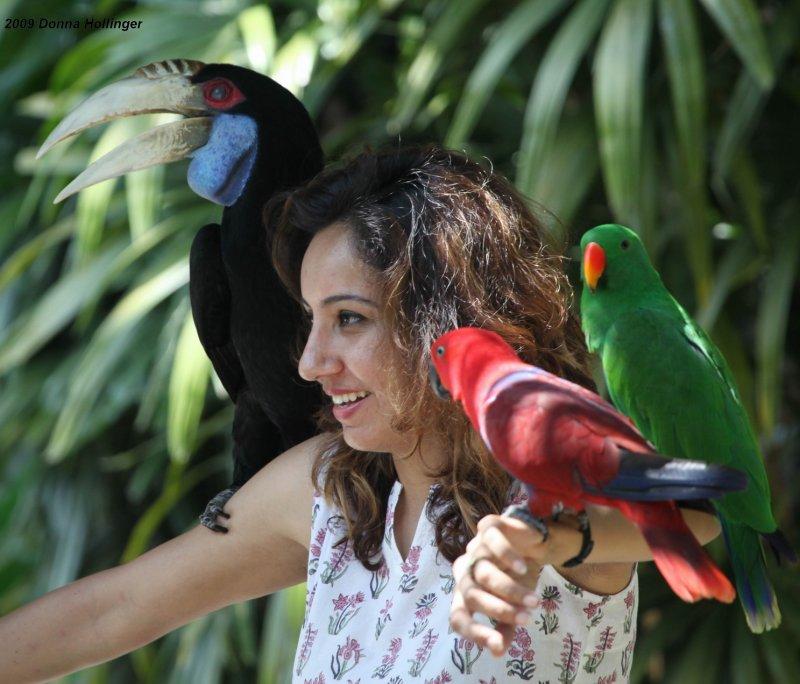 Birds in the hand...