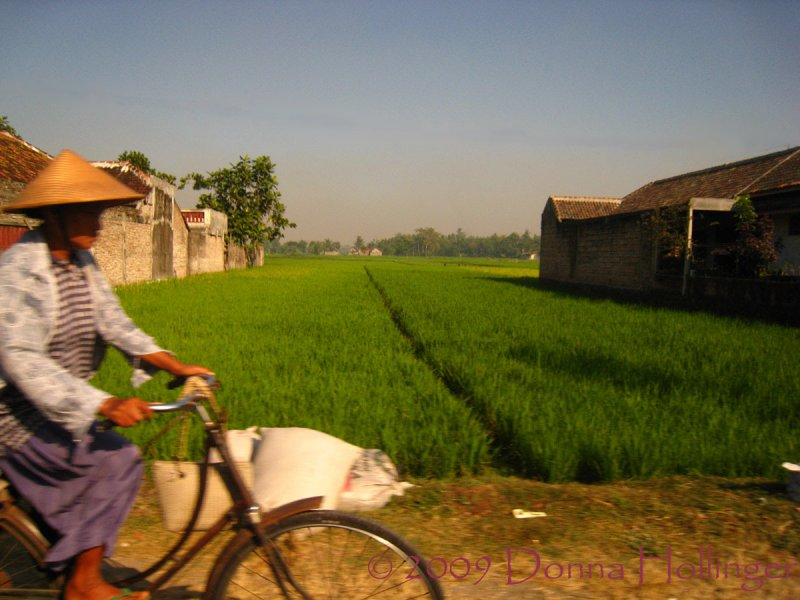 Shooting Impressions of Yogya Countryside