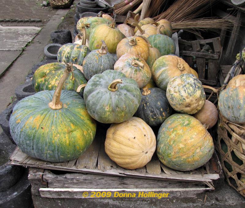 Pumpkins in Bali