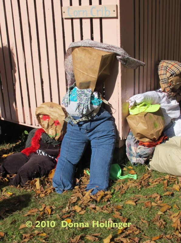 This Scarecrow is a Girl!
