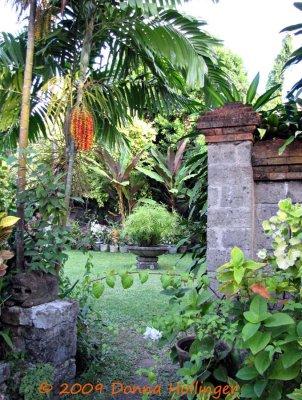 garden.TS.0892.jpg