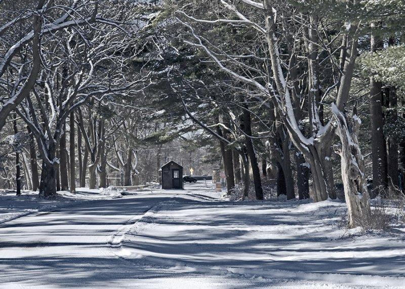 Connetquot State Park