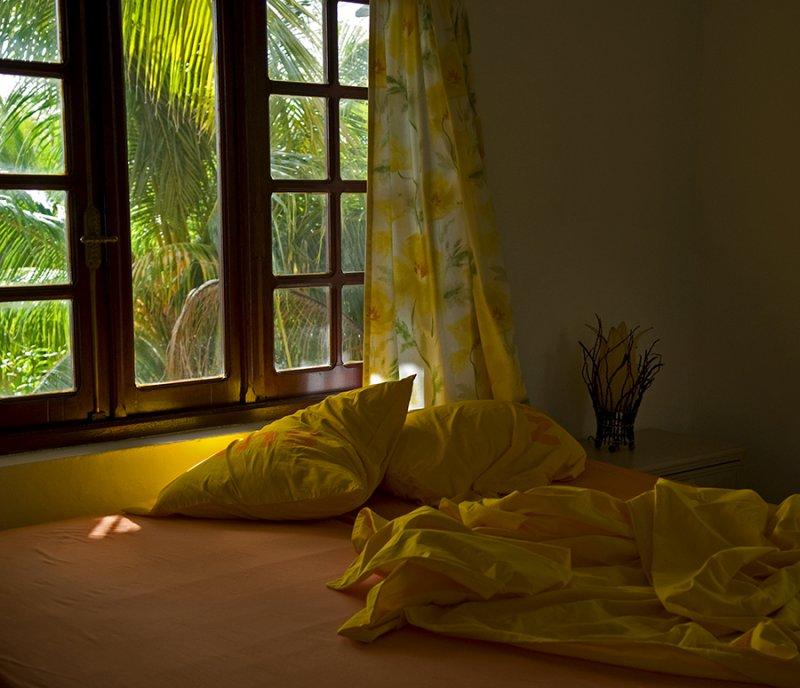caribbean sunlight