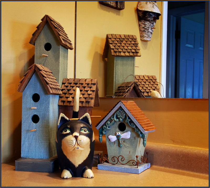 more cats & birdhouses